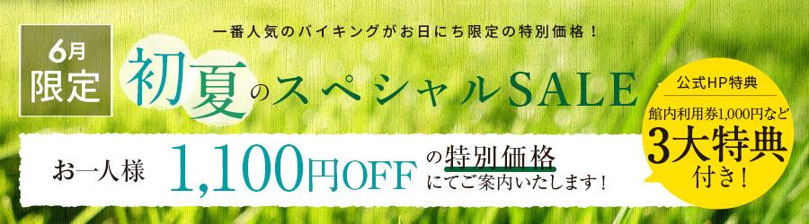 【初夏の大キャンペーン】お一人様5500円OFF
